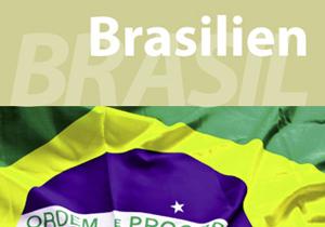 acibra-pt-portfolio-imagem-04-00-brochura-brasil
